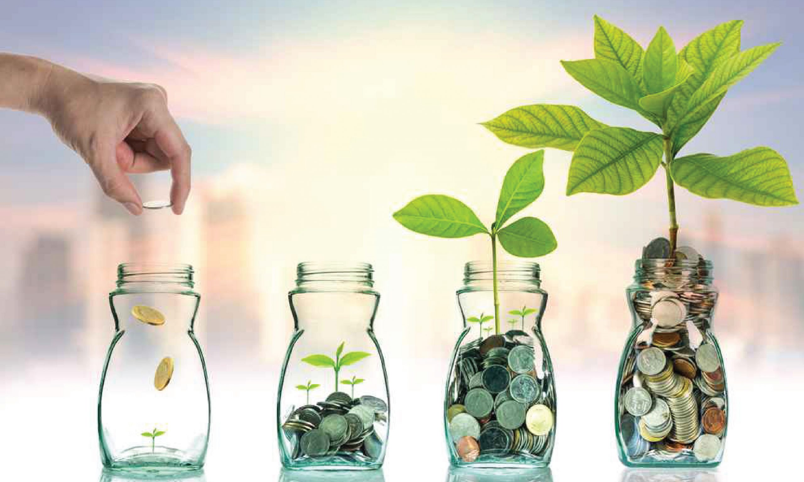 investment planners and financial advisors