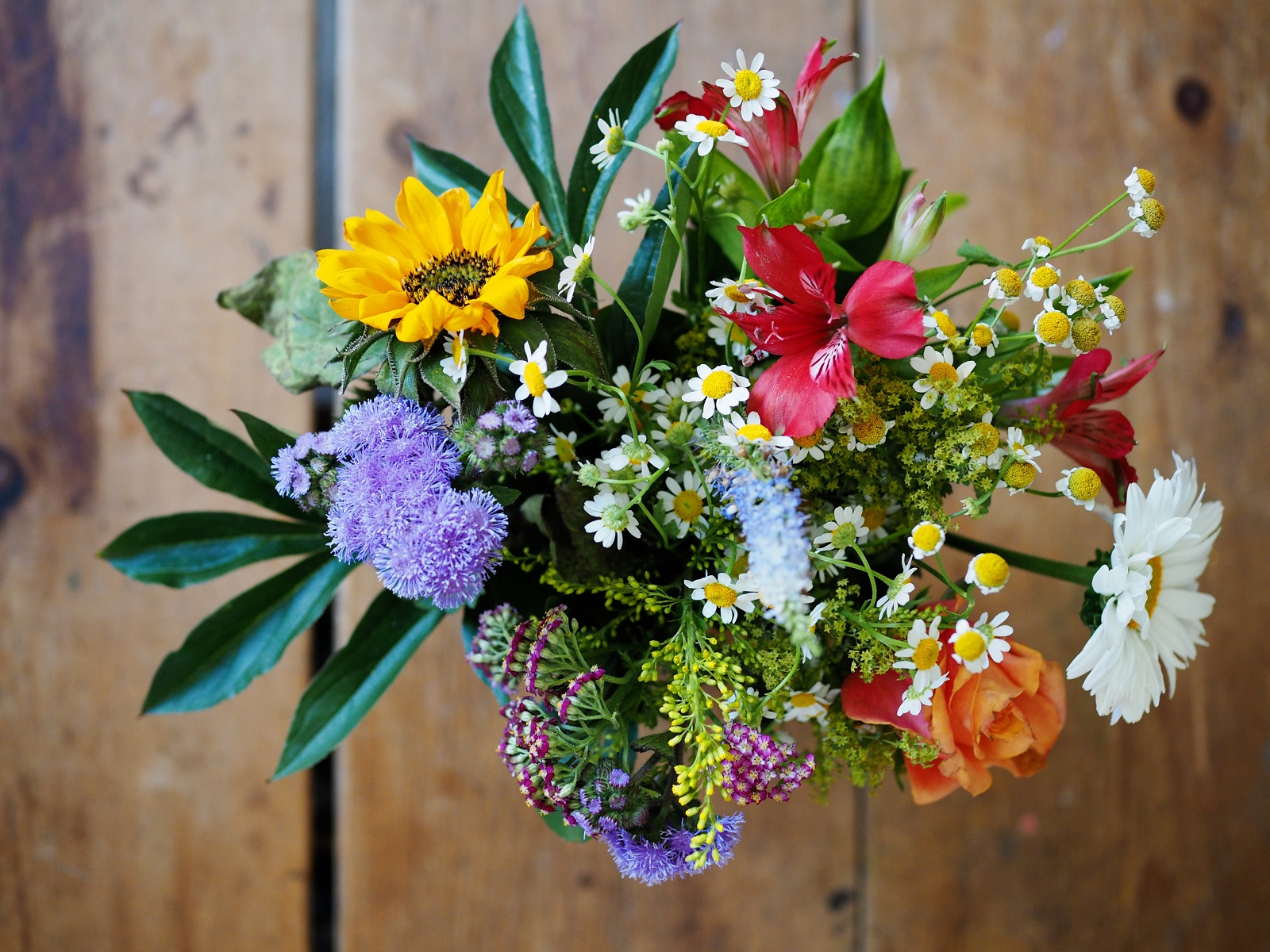 Reasons to Gift Flowers