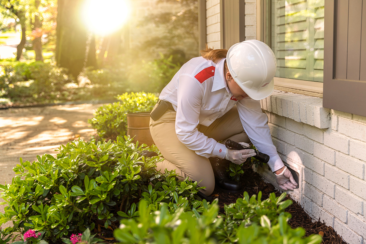How Can You Find the Best Pest Control Service in Edmond OK?