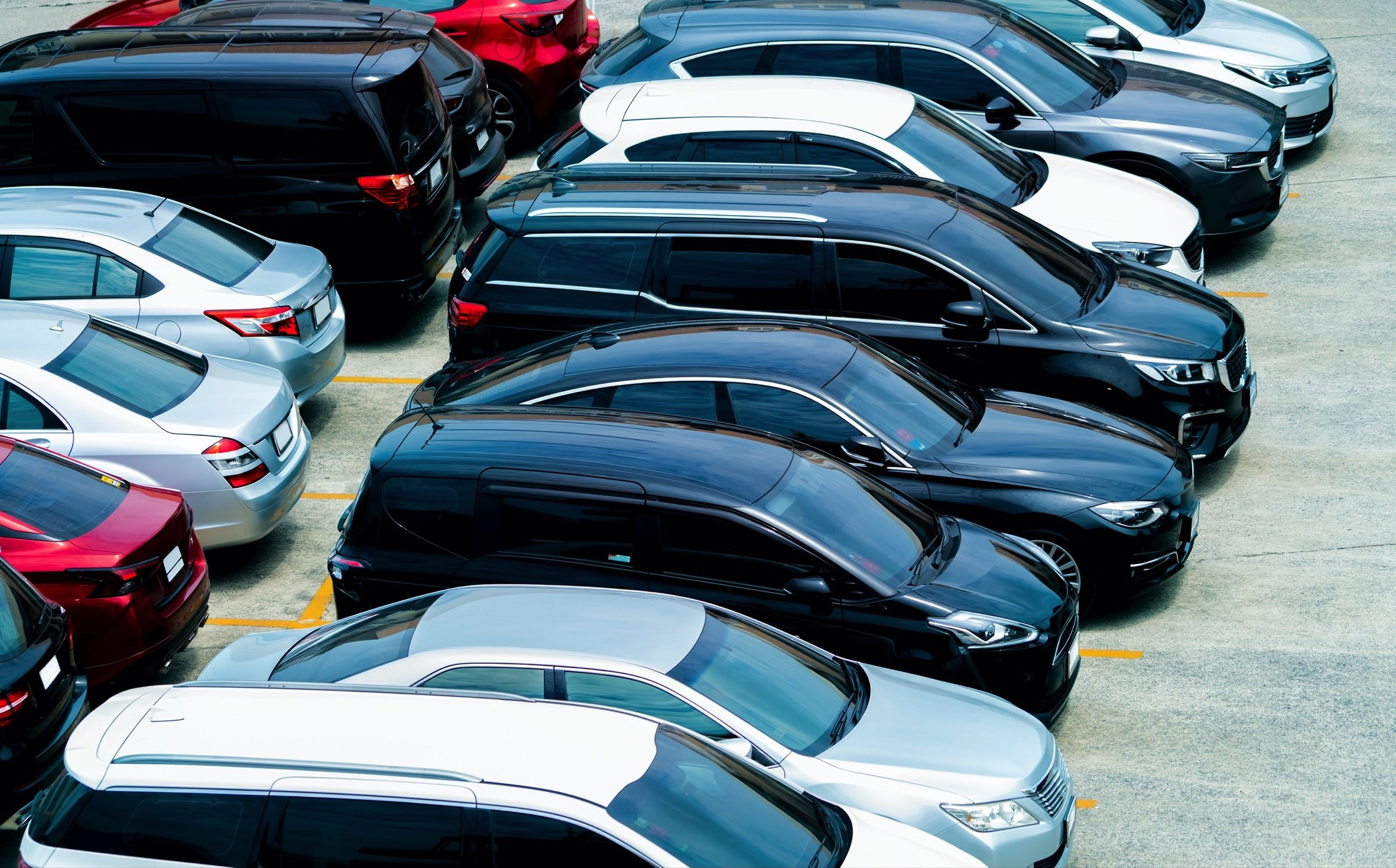 Rental-cars-parked-in-a-lot